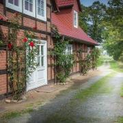 Romantischer Weg am Landhaus Elbeflair